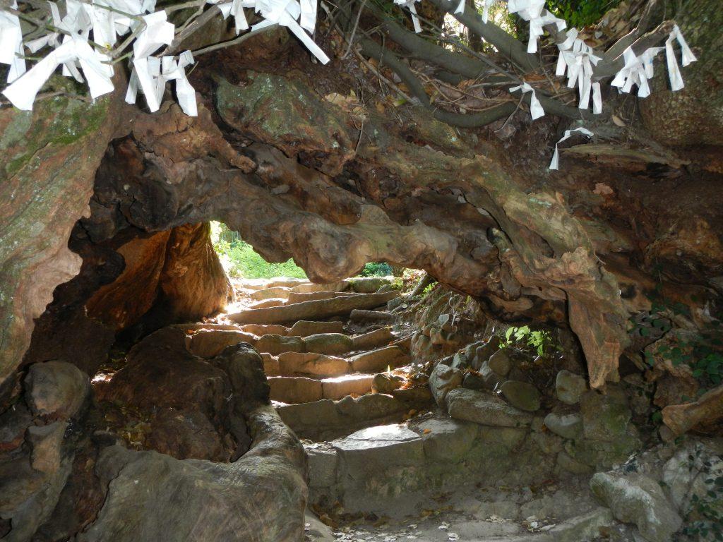 トンネル(生樹の御門)