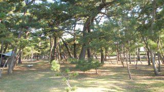 [無料] 種崎千松公園キャンプ場